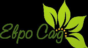 ФРИГО-С доставка рассады и саженцев земляники, клубники, смородины, малины из Европы