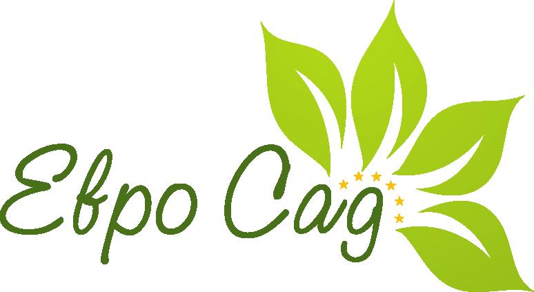 Доставка саженцев и семян из европы: земляника, малина, крыжовник, смородина, ежевика -  ЕвроСад